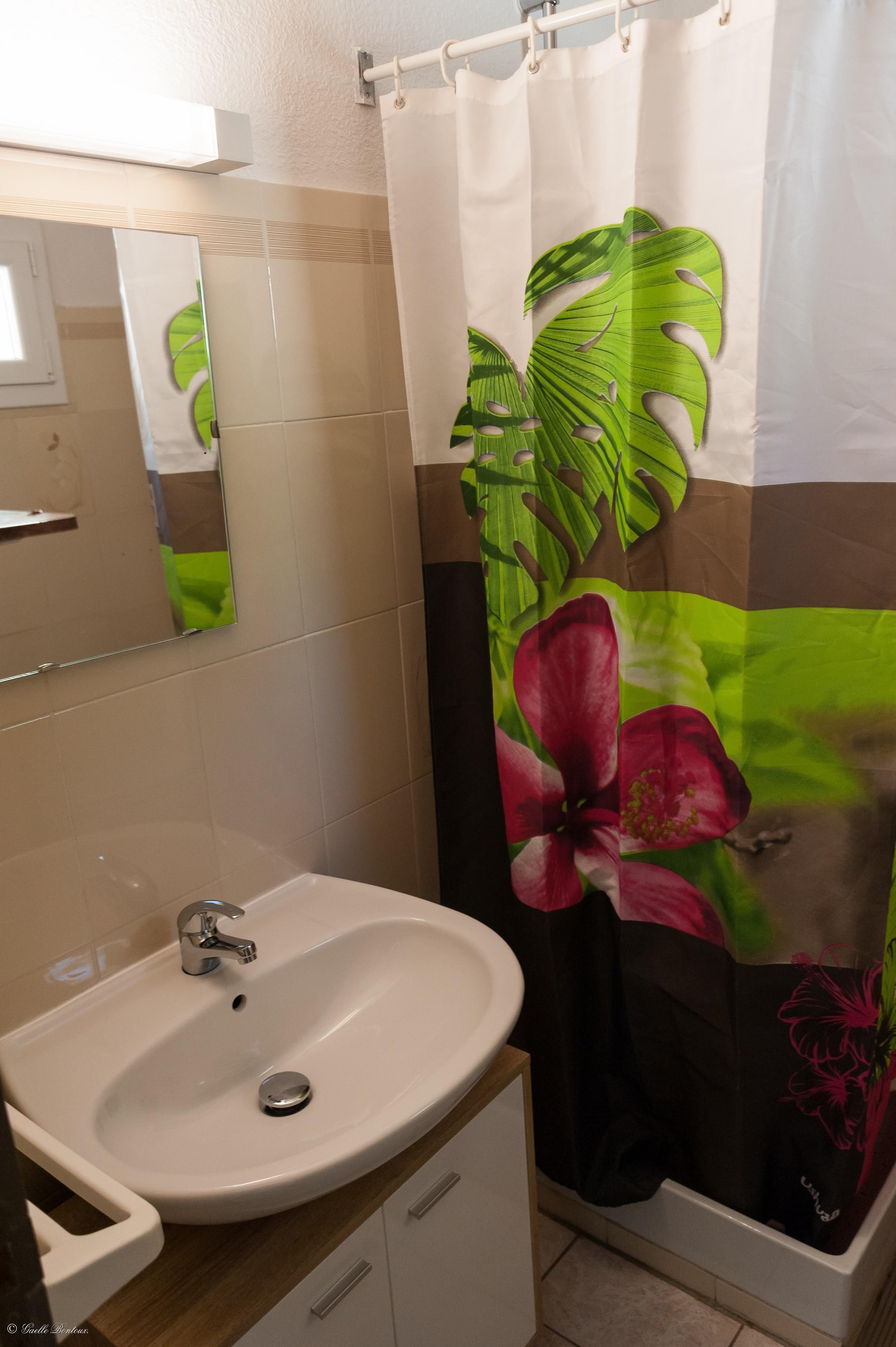 Salle de bain Appart n°2 RDC